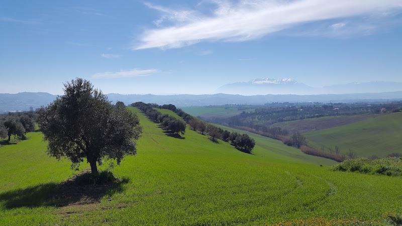 """Gli americani sono convinti: """"Abruzzo terra dove si vive bene"""""""