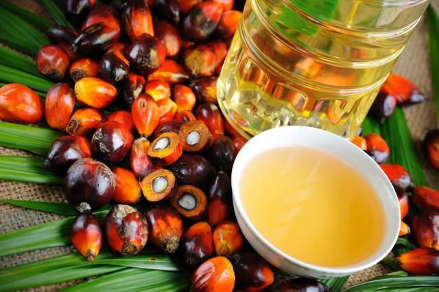 Il potere dei consumatori: il caso dell'olio di palma